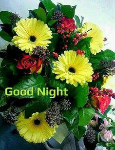 Good Night Pictures, Images, Photos - Page 2 Good Night Friends Images, Good Night My Friend, Good Night Messages, Good Night Moon, Good Morning Good Night, Good Night Quotes, Good Night Blessings, Good Night Wishes, Good Night Sweet Dreams