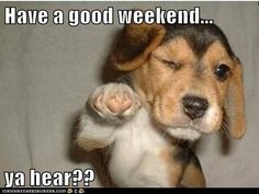Have a good weekend quotes quote weekend days of the week weekend quotes happy weekend