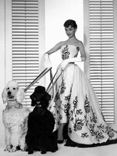 Audrey Hepburn in THAT dress with those poodles. A slim strapless midi sheath with a full gathered separate back skirt. The dark floral embroidery on both pieces pattern-match each other. The gown was created for the 1954 movie Sabrina by Audrey's favorite designer, Givenchy. It was a source of controversy when Edith Head, the official designer for the movie, won an Oscar. Image Credit: EVERETT COLLECTION