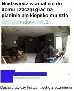 Very Funny Memes, True Memes, Wtf Funny, Funny Lyrics, Polish Memes, Dark Sense Of Humor, Best Memes Ever, Weekend Humor, Komodo Dragon