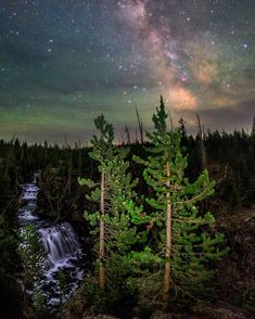 by @babaktafreshi, The World at Night photography. The summer Milky Way in the starry sky of #Yellowstone National Park, located in the states of #Wyoming, #Montana and #Idaho. In 1872 it became the world's first designated national park. Native Americans have lived in the region for at least 11,000 years. While aurora is occasionally visible from this latitude the green patches are NOT the northern lights. They are an atmospheric phenomenon called airglow, colorless to the eyes but not the…