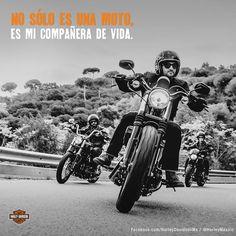 Dark custom 2016 Harley Davidson, Motorcycle, Dark, Vehicles, Motorbikes, Motorcycles, Car, Choppers, Vehicle