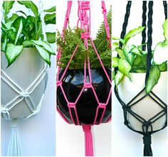 by+Vanessa+Baranovsky,Event+Mafia  Macrame plant hangers.  This site doesn't have DIY but simple square knots do it.