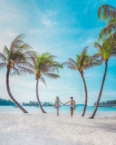 50 Ideas For Affordable Honeymoon Packages ❤ affordable honeymoon packages langkawi malaysia resting on beach surf_and_turf_travel #weddingforward #wedding #bride #affordablehoneymoonpackages Best Honeymoon Spots, Affordable Honeymoon, Best Honeymoon Destinations, Honeymoon Packages, Beach Tops, Beautiful Places To Travel, Surfing, Adventure, Apple Wallpaper