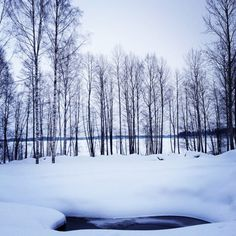 Winter wonderland, Lappeenranta and Imatra region