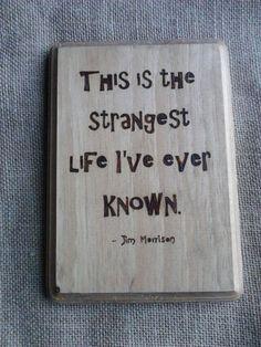 Jim Morrison This is the Strangest Life I've by TheStrangeSnail, $18.00