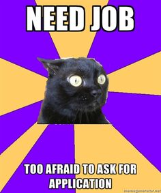 Need job, Too afraid to ask for application. Anxiety cat.