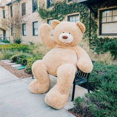 Girl Took a Walk Around the City with Her Giant Teddy Bear