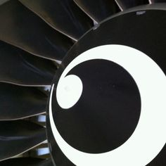 Spinner and Fan Blades of a CFM56-7 jet engine.
