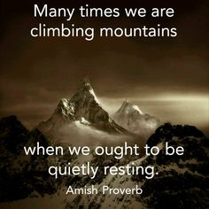 Amish Proverb: Many times we are climbing mountains when we ought to be quietly resting. Amish Proverbs, Amish Culture, Proverbs Quotes, Sisters In Christ, Daughters Of The King, Jesus Pictures, True Words, Way Of Life, Christians