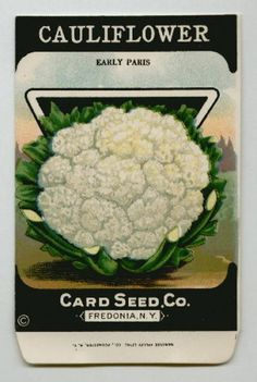 Antique Card Seed Company   Cauliflower