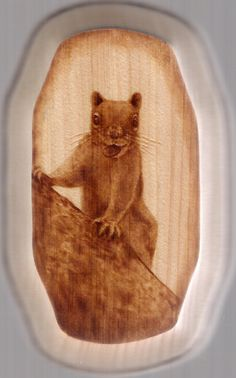"""Wood burning by Colleen Jess, Squirrel, 3x5"""", greatjesspectations@gmail.com, www.greatjesspectations.com"""