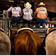 And they call the thing...rodeo....