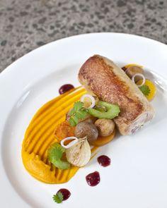 Ballotine of organic chicken, coq au vin garnish