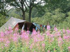Camping de Roos, 4 keer gekampeerd