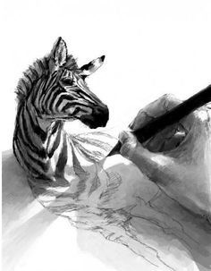 zebra in zeichnung (Cool Art Inspiration) Art And Illustration, Cartoon Illustrations, Design Illustrations, Drawn Art, Hand Drawn, Ouvrages D'art, 3d Drawings, Pencil Drawings, Awesome Drawings