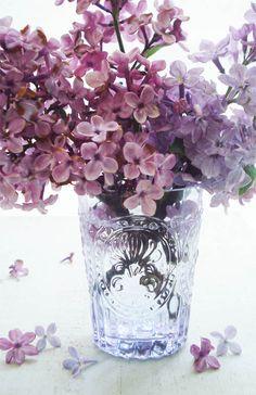 Lilacs_ http://suchprettythings.typepad.com/my_weblog/2013/05/did-i-mention-the-lilacs.html