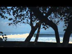 Costa Rica: Nature