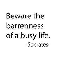 Socrates' busy life.  I absolutely love and agree with this completely.  People are only busy all the time for one reason, that they can not live alone with themselves for any measurable length of time.