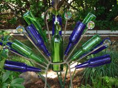 bottle peacock