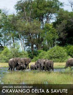 African Safari Tours 2015: Okavango Delta and Savute