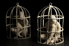 the body cage