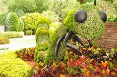 Parque Cypress Gardens, Orlando, Flórida, EUA