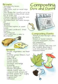 How to compost in your backyard - Alternative Energy and Gardning