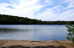Jamaica Pond (I love this place!)