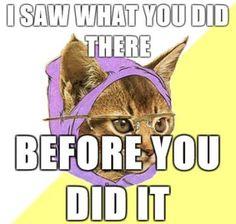 hipster cat meme - Hľadať Googlom