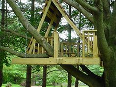 tree houses for adults | By Flickr user guy schmidt (Creative Commons)