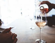 Pink Wine: The Case for Rosé / Blog / Need Supply Co.