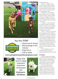 Pet Boarding and Daycare March April 2016 Pet Grass, Pet Boarding, March, Dreams, Dog, Pets, Animals, Diy Dog, Animales