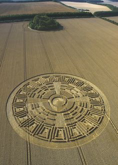Crop Circle Photograph from 2005