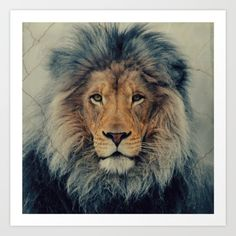 The lion represents courage and strength; the nocturnal creature has been the symbol of power for centuries.