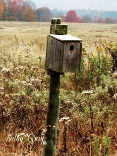 House on a Post