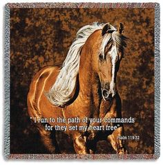 63 Best Horse Pictures With Scripture Images In 2016