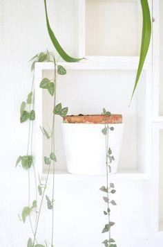 Ein Wandregal aus Vierecken selber machen: Mit Quadraten aus Holz lässt sich so ein Wandregal leicht selber machen. Die DIY-Anleitung erklärt euch wie.