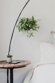 Round Brown Side Table Beside Bed · Free Stock Photo Indoor Garden, Indoor Plants, Origami, Decor Logo, Cricut, Bedroom Plants, Home Decor Store, Lowes Home Improvements, Home Depot