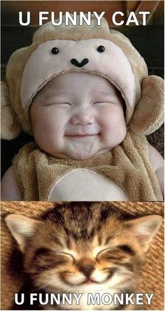 humor #picture
