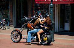 Don't know Hells Angels Movie - Hells Angels MC 2015 4 Angel Movie, Hells Angels, Motorcycle Clubs, Documentaries, Movies, Holland, Film, News, 2016 Movies