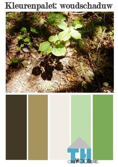 kleurenpalet woudschaduw