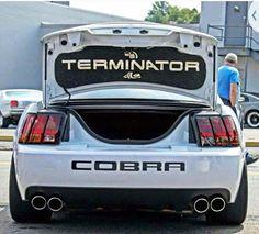 SVT Cobra