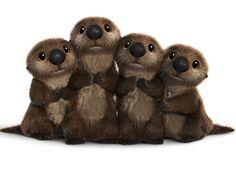 Bebês lontras de procurando Dory ♥                              …