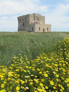 Torre Guaceto a Brindisi, province of #Brindisi , region of Puglia, Italy