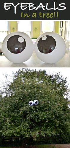 Eyeballs in a tree for Halloween! and other Easy But Awesome Homemade Halloween Decorations