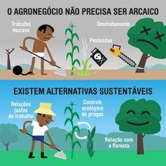 Agricultura sustentável - http://www.jardimdomundo.com/por-que-se-alimentar-de-forma-diferente-pode-melhorar-o-mundo-e-a-sua-vida/