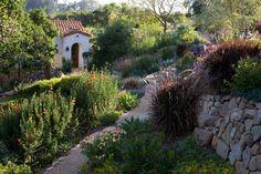 Mediterranean Landscape Design, Pictures, Remodel, Decor and Ideas - page 10
