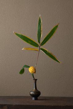 2012年1月4日(水)          新年らしく、晴れやかな花に。  花=仏手柑(ブシュカン)、熊笹(クマザサ)  器=金銅華瓶(鎌倉時代)