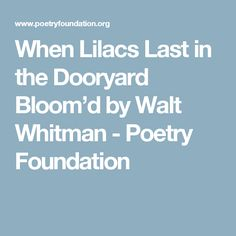 an analysis of when lilacs last in the dooryard bloomd by walt whitman In the door-yard fronting an old farm-house, near the white-wash'd palings, stands the lilac bush, tall-growing, with heart-shaped leaves of rich green as the night advanced, and i saw on the rim of the west, ere you went, how full you were of woe as i stood on the rising ground in the breeze, in the.